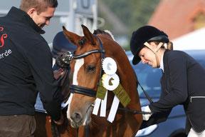 Reitunterricht, Ausritte, Lagerfeuer- Ferienmit demPferd auf dem HeidkatenHof in Schleswig-Holstein