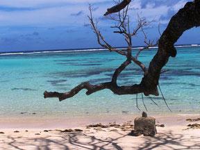 escursione isola di Cousin Seychelles,