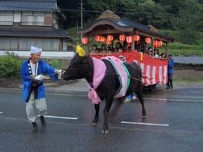牛車をひっぱる、牛さん。