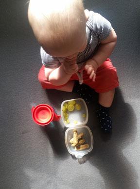 Unser Baby-led Weaning Blog - Zwischenbilanz Woche 21
