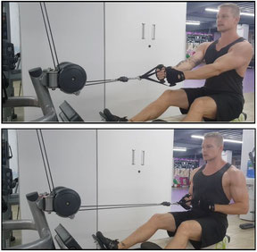 back exercises cable row