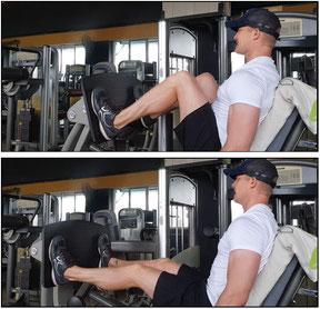 leg exercises leg press
