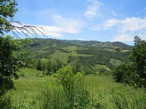 Durch wilde Berglandschaften ...
