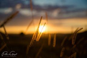 Sonnenuntergang Landschaft Fotografie Peter Gegel