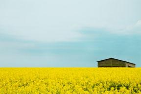 landschaftsfotografie landscape peter gegel