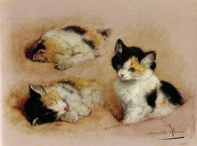 HENRIETTE RONNER KNIP - Studio di un gatto che si sveglia