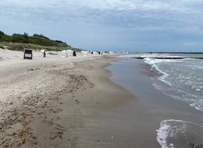 Menschenleerer Strand auf dem Darß