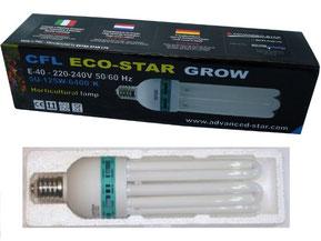 Lampe économique 6400 K permettant d'éclairer une lumière blanche bleutée pour une bonne croissance des plantes. Moins de 0.30€ de consommation en électricité par jour. L'ampoule fait 40 cm de long.