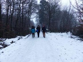 schneebedeckte Wege ...