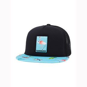 quiksilver, surf, hat, boy, boys, rehoboth, rehobeth, beach, snap back, sun protection, kids, rehoboth, rehobeth