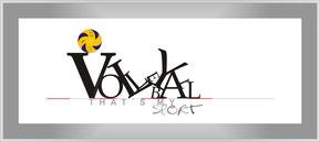 Typografie mit Volleyball (c) W. Metschke 2014-06-02