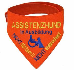 Assistenzhund in Ausbildung, Halstuch
