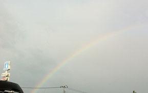 おはようございます!本日晴天と思って犬の散歩に出たところ、突然の雨、と思ったら見上げた空に虹ですよ!