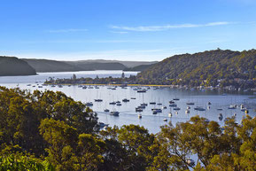 Place with a view - Blick über Pittwater
