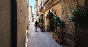 Гид в Барселоне, экскурсии по городу