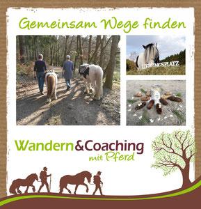 Pferdegestütztes Coaching im Siegerland, Achtsamkeit, Resilienz, Heilpadagogik