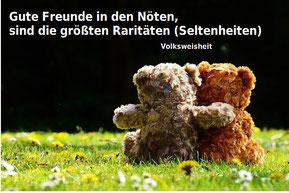 2 Bären sitzen auf der Wiese