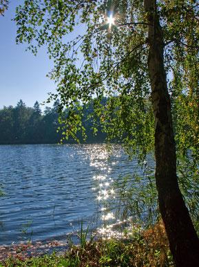 Vielbecker See Foto: Ingrid Strauß