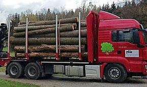 Kurzholz-LKW zum Transport von Rundholz