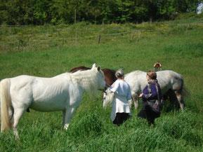 Sandrine Fournier, Nature et Sens Agen / Bon-Encontre, Médiatrice animale, médiation animale, communication animale, sophrologue, sophrologie, soins aux animaux, bien être des animaux, bien être des humains