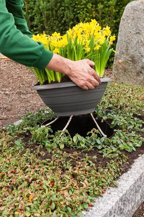 Grab Bewässerungssystem Friedhof wenig Wasser pflegeleichte Grabgestaltung volle Sonne im Sommer