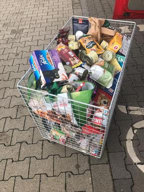 Spendenbox vom Fressnapf Bergheim, Foto: Härtel