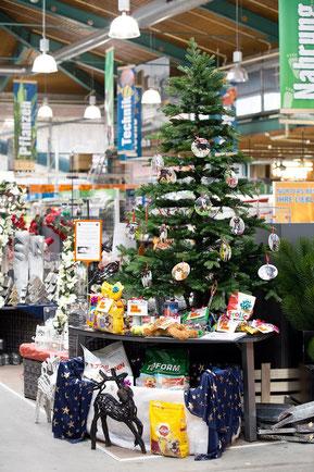 Weihnachtswunschbaum im Hornbach