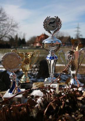 Lous Auszeichnungen und Pokale