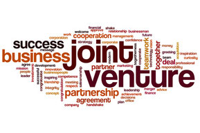 Interim Management - Joint Venture in Indien
