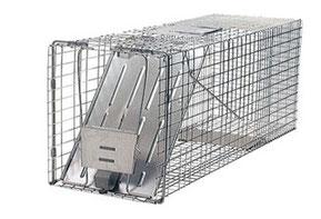 猫の捕獲器ハバハートケージトラップ1079の写真