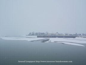 Traversée de la baie de somme, découverte des phoques et des oiseaux, pensez à Découvrons la Baie de Somme©Découvrons la baie de somme