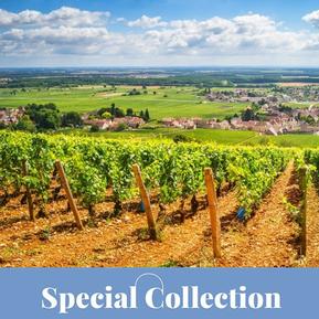 Special Collection: Kultur & Kulinarik im Burgund