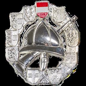 Feuerwehrleistungsabzeichen SILBER