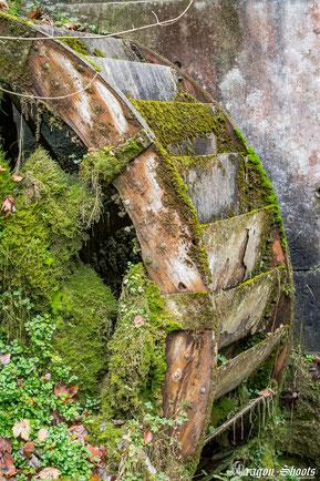 Urban; Urbex; Lost-Place; alt: verlassen: Old: Fotograf; Fotografie; Lenninger Tal; Lenningen; Mühle; Wasserkraft; Schlattstall