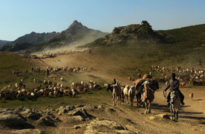 Los pastores nomadas indoeuropeos y semitas movían de un lado a otro sus grandes rebaños . Domesticaron por primera vez el caballo y el camello, lo que les ayudaba a recorrer grandes distancias.