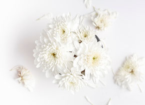 供養の種類を表す白い花束の写真