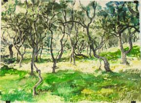 """""""Morrone Birkwood"""", Ölkreiden und Aquarell auf Papier, 46  x61 cm, 2015"""