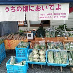 オーガニックマーケット, たまご村敷島店, 2019年7月28日