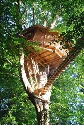 Cabane perchée à 8 m, accessible par un escalier en colimaçon puis par une passerelle de 15 m de long sécurisée par des filets et une échelle à crinoline de 12 barreaux.