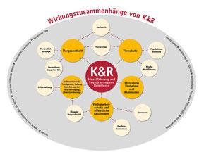 Wirkungszusammenhänge von K&R