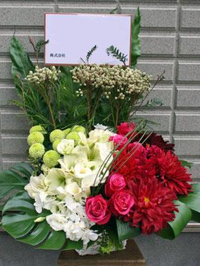お祝い花 オープン5