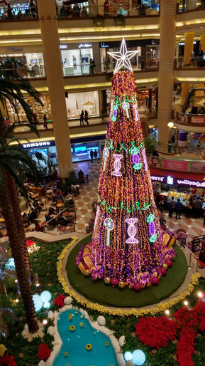The Christmas Tree at the Citystars mall, Cairo. Dante Harker