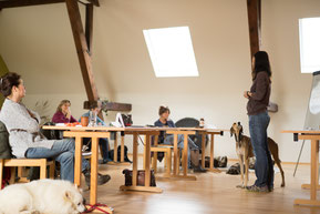 Unterricht im Raum für eine Gruppe