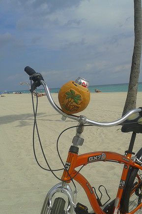 cruisercandy   cruiser candy coconut cup holder beach cruiser bicycle
