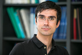 Priv. Doz. Dr. med. Sebastian Cotofana