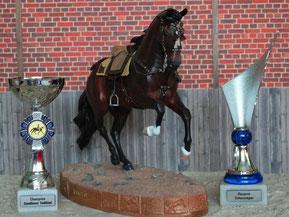 1.Platz Tack und Reserve Champion