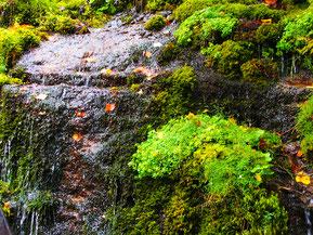 das Wasser plätschert die Felsen herunter