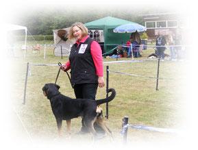 Großer Schweizer Sennenhund Hetty wird von der Richterin begutachtet