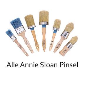 Auf dem Bild sind alle Pinsel von Annie Sloan nebeneinander gereiht und dienen als Shop Foto.