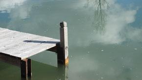 Gewässerschutz ist ein großes Thema im Natur- und Umweltschutz